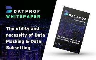 Whitepaper: The utility and necessity of data masking