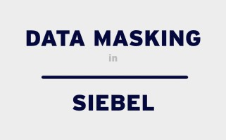 Data masking in Siebel