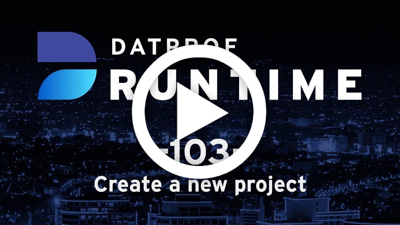 Trainingvideo 103 DATPROF Runtime
