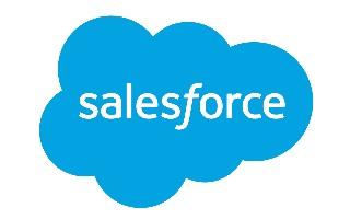 Data maskeren in Salesforce