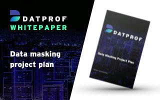 Data Masking Project Plan